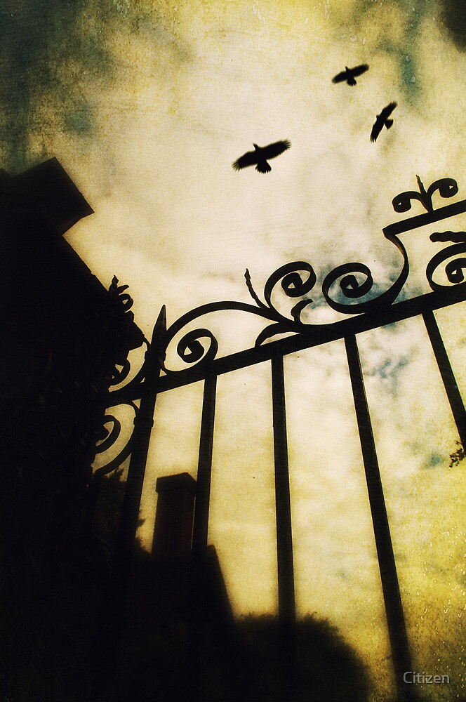 The Gate by Nikki Smith (Brown)