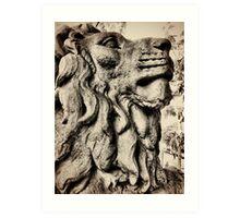 Salts lion Art Print