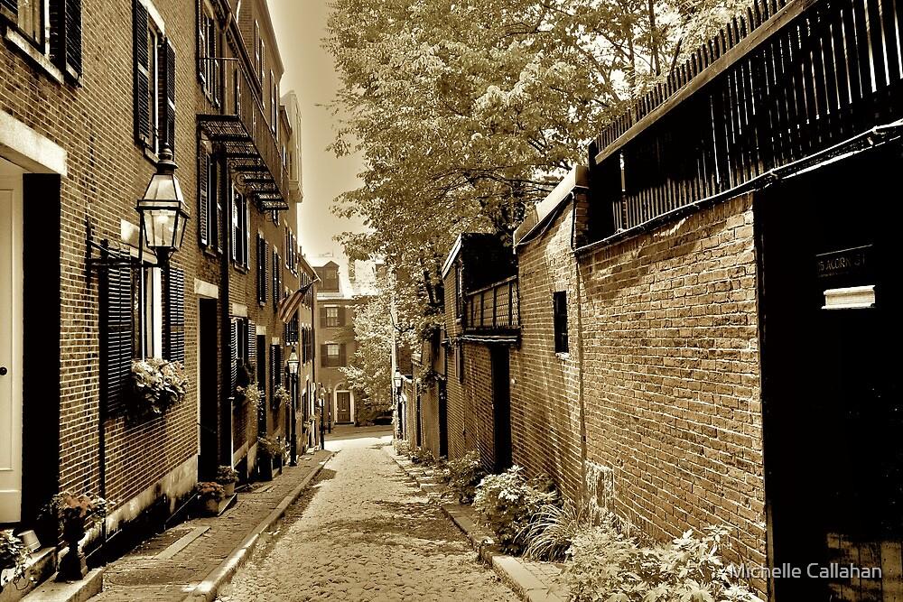 Acorn Street by Michelle Callahan