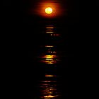 Stairway to the Moon, Broome, WA by JuliaKHarwood