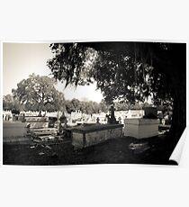 Grand Coteau, LA cemetery  Poster
