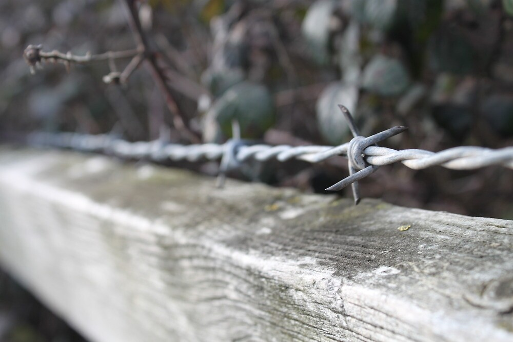 Wire on a fence by Mrpunkfox