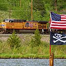 Train the Flags by Bo Insogna