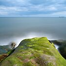 Dysart Unusual Rocks by Claire Tennant