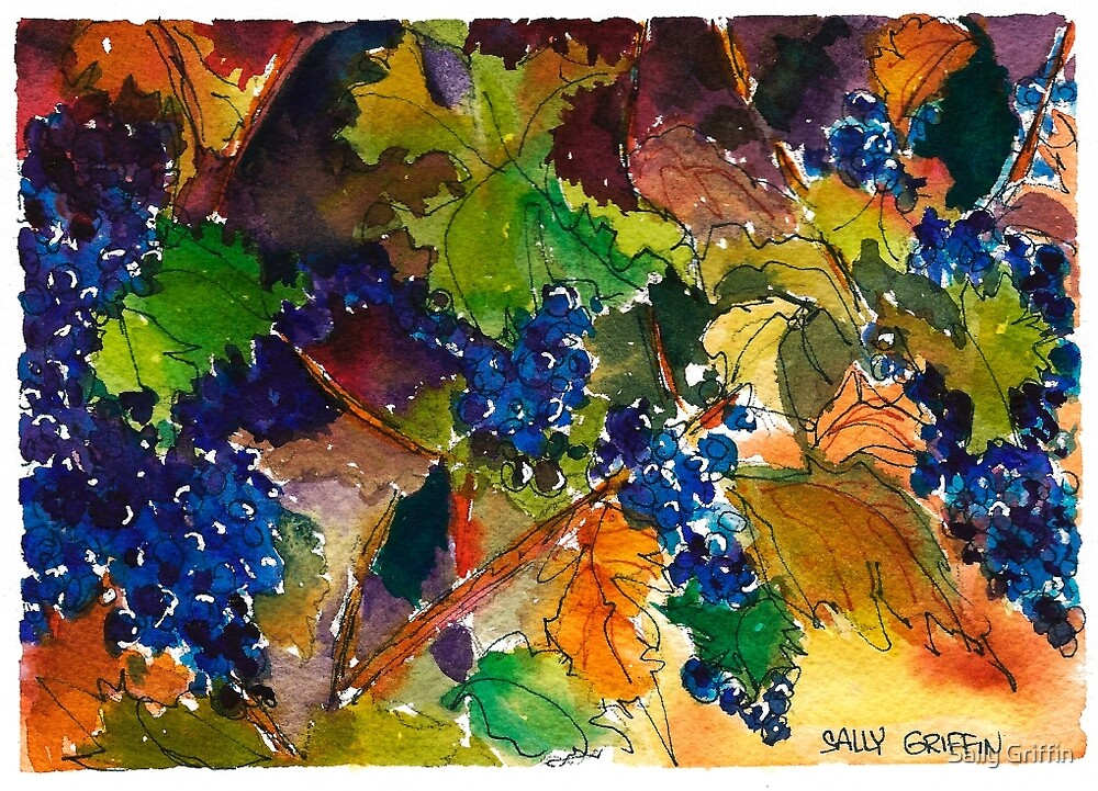 Vineyard Color by Sally Griffin