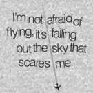 I'm not afraid of flying by abinning