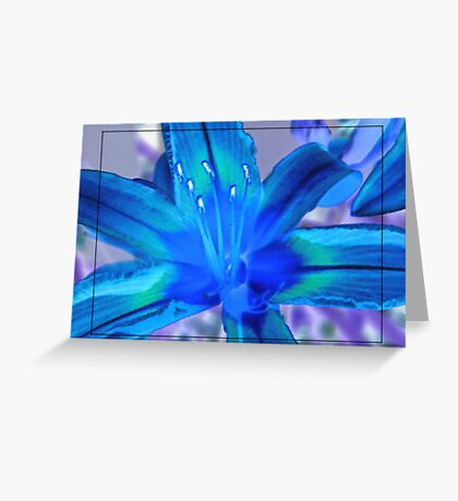 Inverted Lily Greeting Card