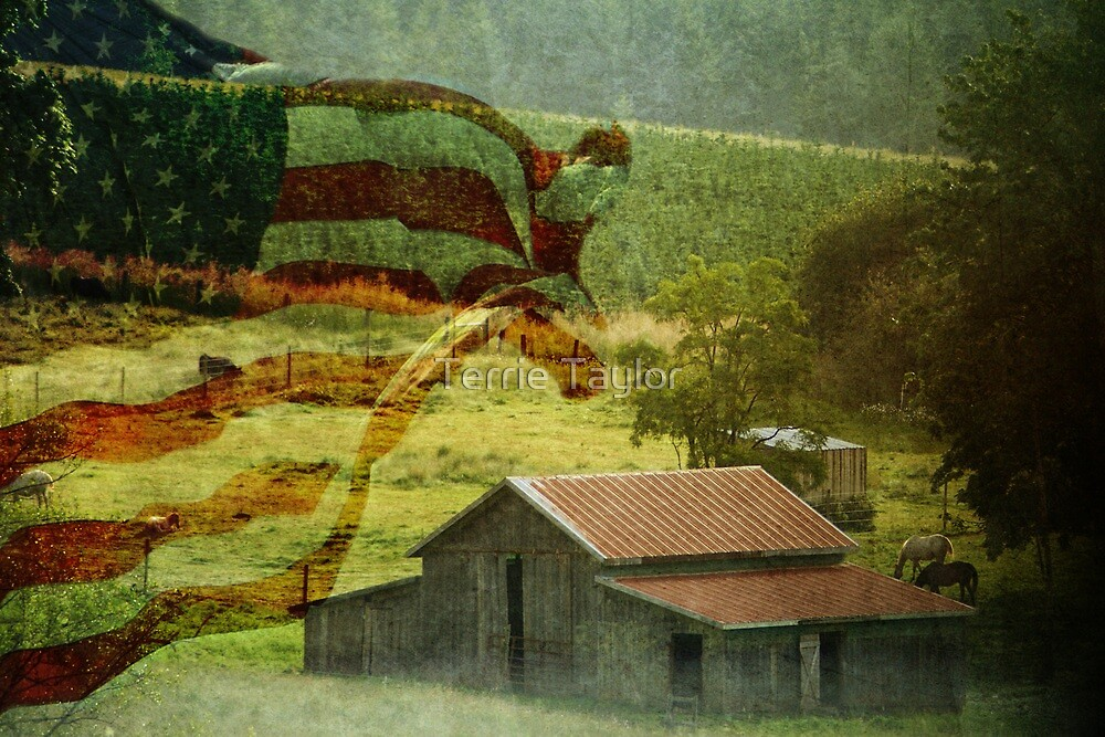 Portrait Of America by Terrie Taylor