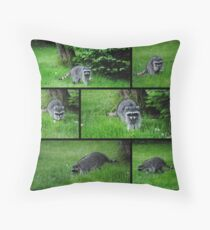 Collage Of Raccoon In Our Yard Today Throw Pillow