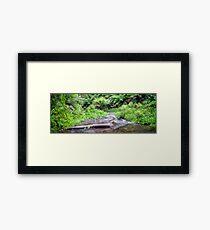 Barham River Panorama Framed Print
