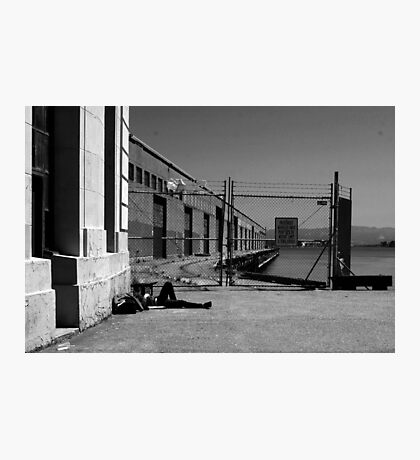 SLEEPING ON THE DOCK OF THE BAY Photographic Print