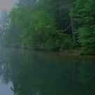 Morning Fog by Chelei