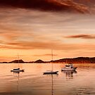 Soldiers Point Sunset by Michael Howard