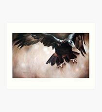 """Alight - The Wedge-tailed Eagle"" Art Print"
