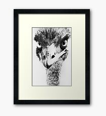 What You Looking At  Framed Print