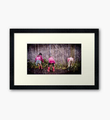 Snail Hunters Inc Framed Print