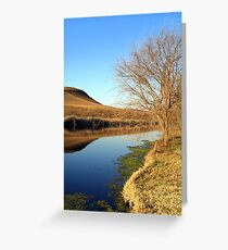Wilgeriver, Gauteng, South Africa during winter. Greeting Card