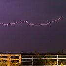 Pasture lightning by Larry  Grayam