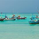 Colourful Fishing Boats by Dilshara Hill