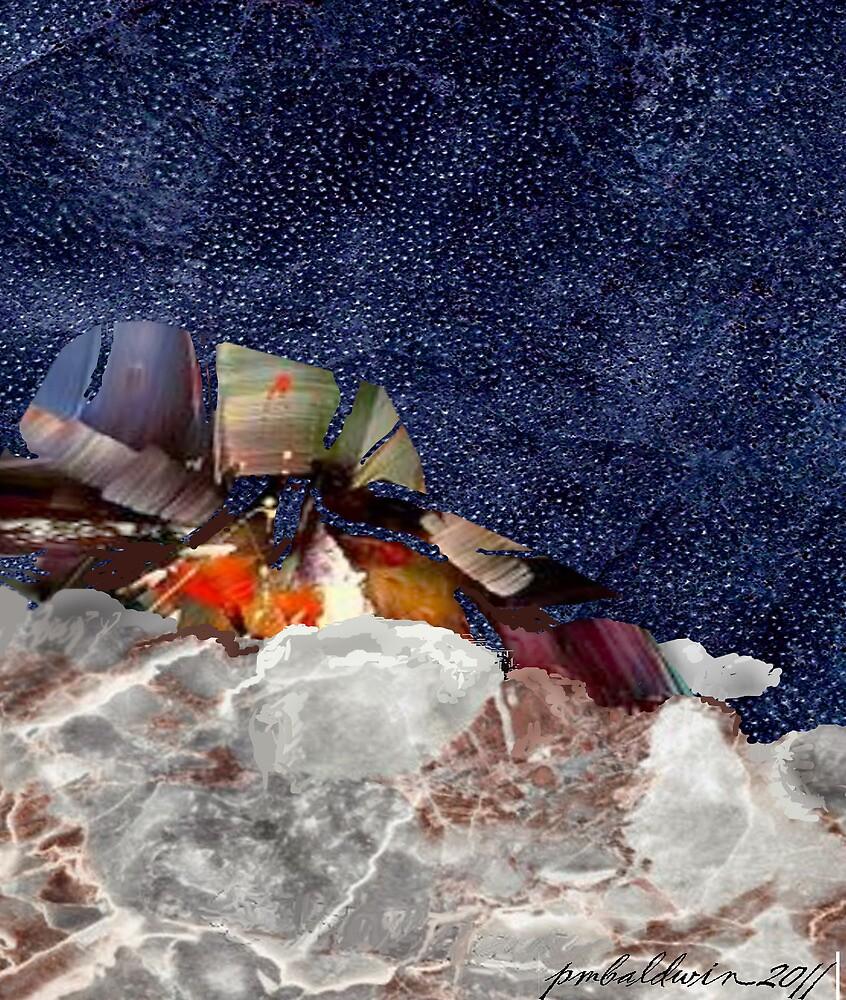 """""""Hidden Abundance"""" by Patrice Baldwin"""