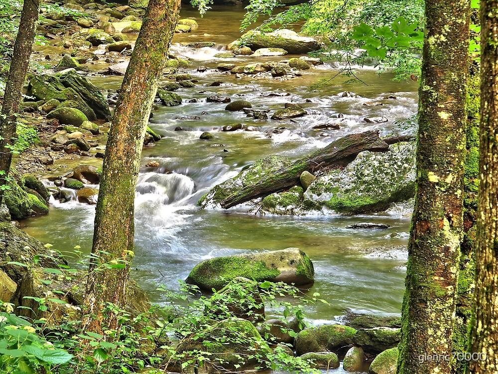 Smokey Mountain Park Stream - North Carolina by glennc70000