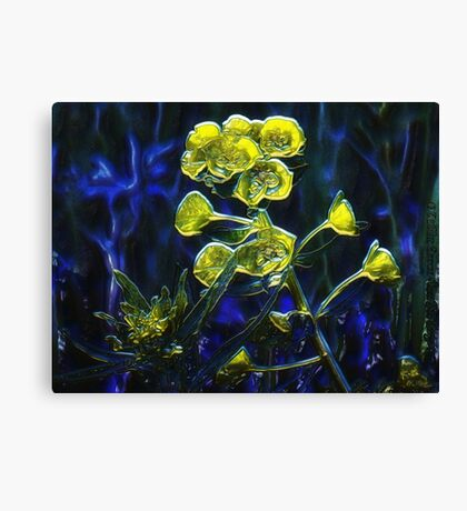 Blues in the Night Canvas Print