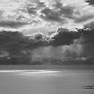 Seascape - Coolangatta Australia by Barbara Burkhardt
