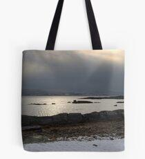 Cold Cormorant Tote Bag