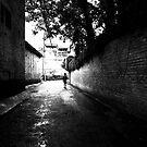 the walk by SRana
