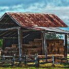 Hay Shed by JeniNagy