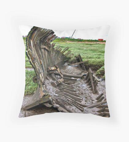 Skeleton Coast Throw Pillow