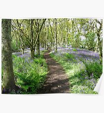 A Fairytale Pathway Poster
