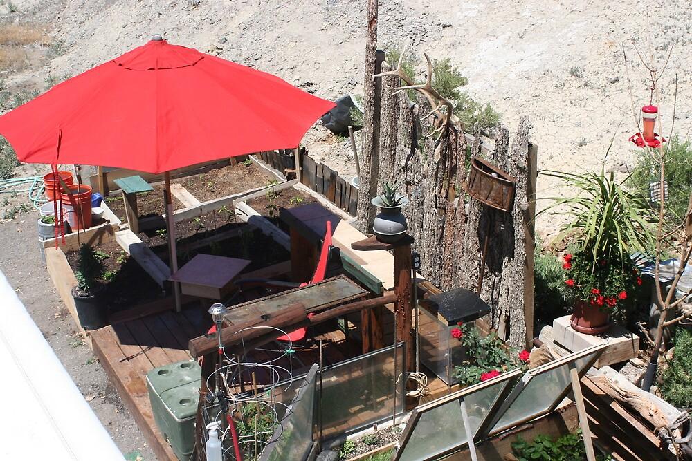 Margaritaville....Colorado desert style! by ThomHull