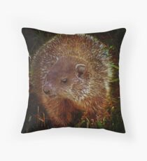 Baby Groundhog Throw Pillow