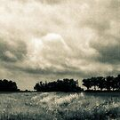 Storm Clouds Over A Meadow by MLabuda