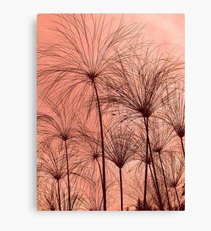 Plant Silhouettes  Canvas Print
