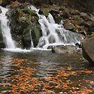 Kamyanka falls in autumn by Elena Skvortsova