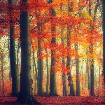 Dreamy Fall Reds by DyrkWyst