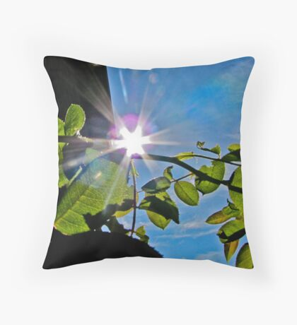 Flared Throw Pillow