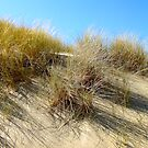 Dunes No.2 by Paul Berry