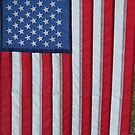 stars and stripes forever by rue2