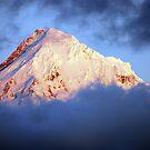 Mt Hood at Sunset by Jennifer Hulbert-Hortman