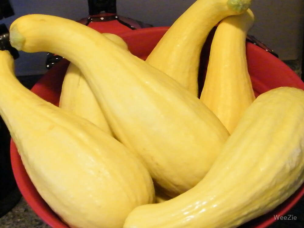 Squash by WeeZie