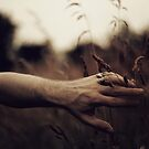 I can touch the summer, I can touch the dusk, But I can't touch you by Peter X. Eriksson