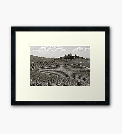 Vineyards of Tuscany Framed Print