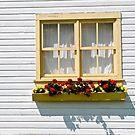 summer window box by richard  webb