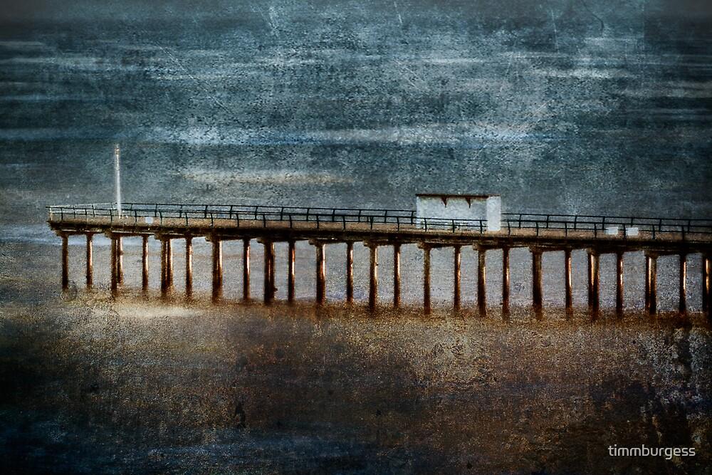 Felixstowe Pier by timmburgess