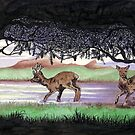 Out of the Forest II `Roe Deer in Morayshire by sharpie