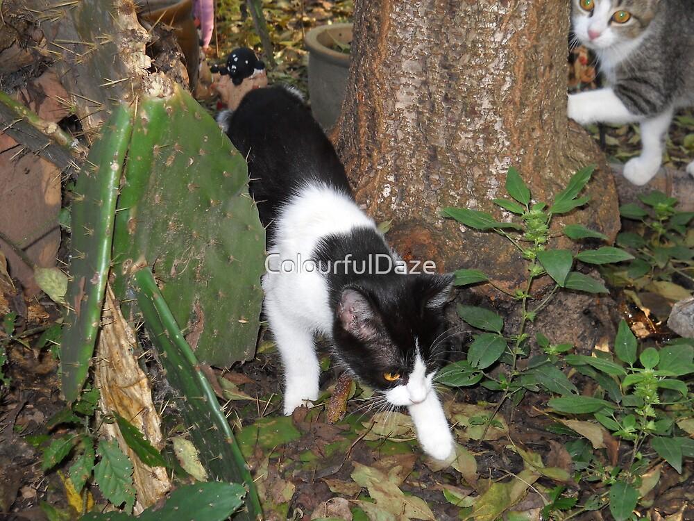 Urban Jungle Cat by ColourfulDaze