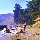 Beach of Horcon Chile by Daidalos
